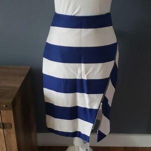 Express Striped Zipper Pencil Skirt